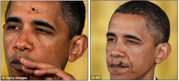 Sang lalat pun ingin merasakanmendarat di muka Presiden Amerika  Serikat ini, keren masuk Media nih